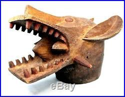 Art Africain Imposant Masque Heaume Cracheur de Feu Senoufo Usuel 50 Cms