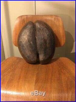 Coco Fesse Seychelles Coco de mer Nut Pralin